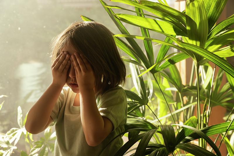 VELUX – La dura verità sull'inquinamento indoor